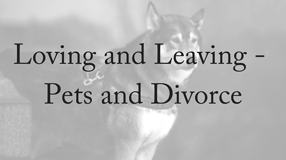 Loving and Leaving - Pets and Divorce