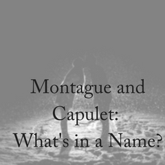 Montague & Capulet: What's in a Name Change?