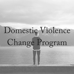 What is a Men's Domestic Violence Change Program?