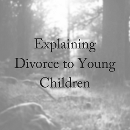 Explaining Divorce To Young Children