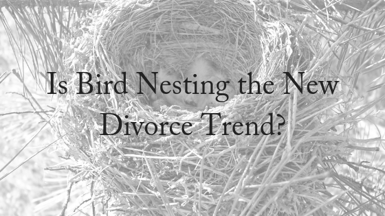 Is Bird Nesting The New Trend After Divorce?